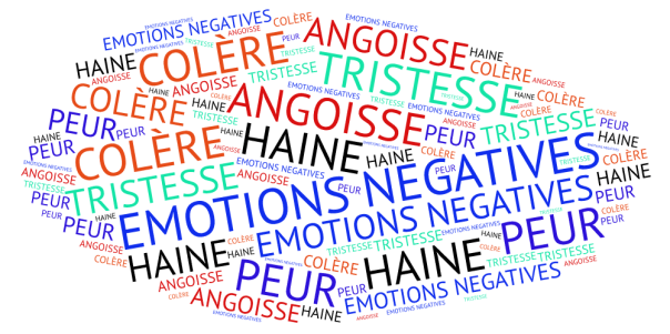 14 EMOTIONS NEGATIVES