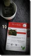 10-chakaiclub-les-filles-du-thé
