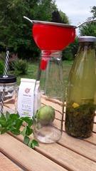 infusion-recette-les-filles-du-the-citron-menthe-mojithe