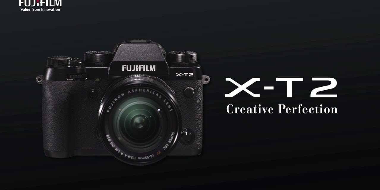"""Meilleur hybride pour l'animalier : """"Fujifilm X-T2 a le meilleur AF tout hybride confondu""""… mais le gagnant est ?"""