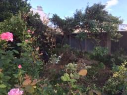 les jardiniers à vélo paris ile de france aménagement entretien terrasse jardin pyrénées friche