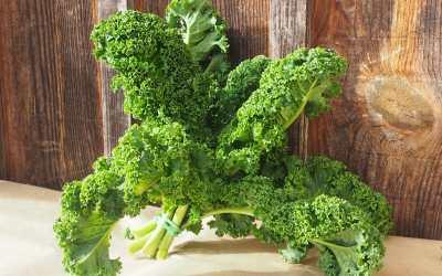 Chou Kale