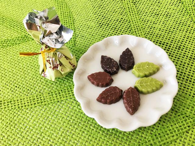モンロワール,リーフメモリー,葉っぱのチョコ,グリーンの巾着,