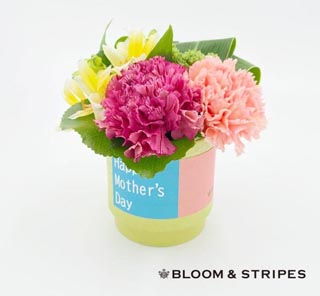 ブルーム&ストライプス,生花のアレンジメント,スタイリッシュアレンジメント(S),BLOOM & STRIPES,母の日,2020,