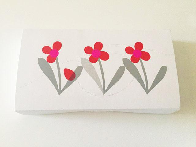 オードリー,アイスグレイシア,赤とピンクのお花のイラストが描かれている外箱