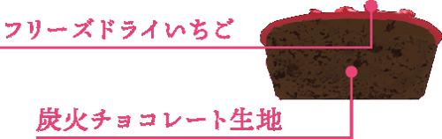 銀のぶどう,ショコラ ハート,ベリーショコラケーキの断面,中身の説明,