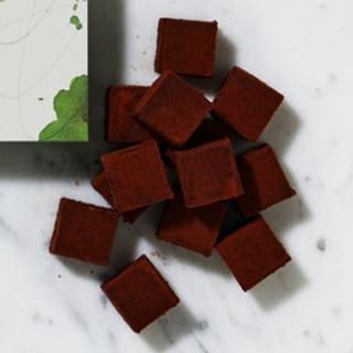 メゾンカカオ,アロマ生チョコレート MUSCAT,コロンビア産のフルーティーなビターチョコレート,バレンタイン,2021,チョコレート,MAISON CACAO,Valentine,chocolate,