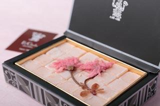エクチュア,Ek Chuah,ブルージュの石畳(桜),ホワイトデ―,2020,