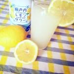瀬戸内レモン,食べ物,カルディ