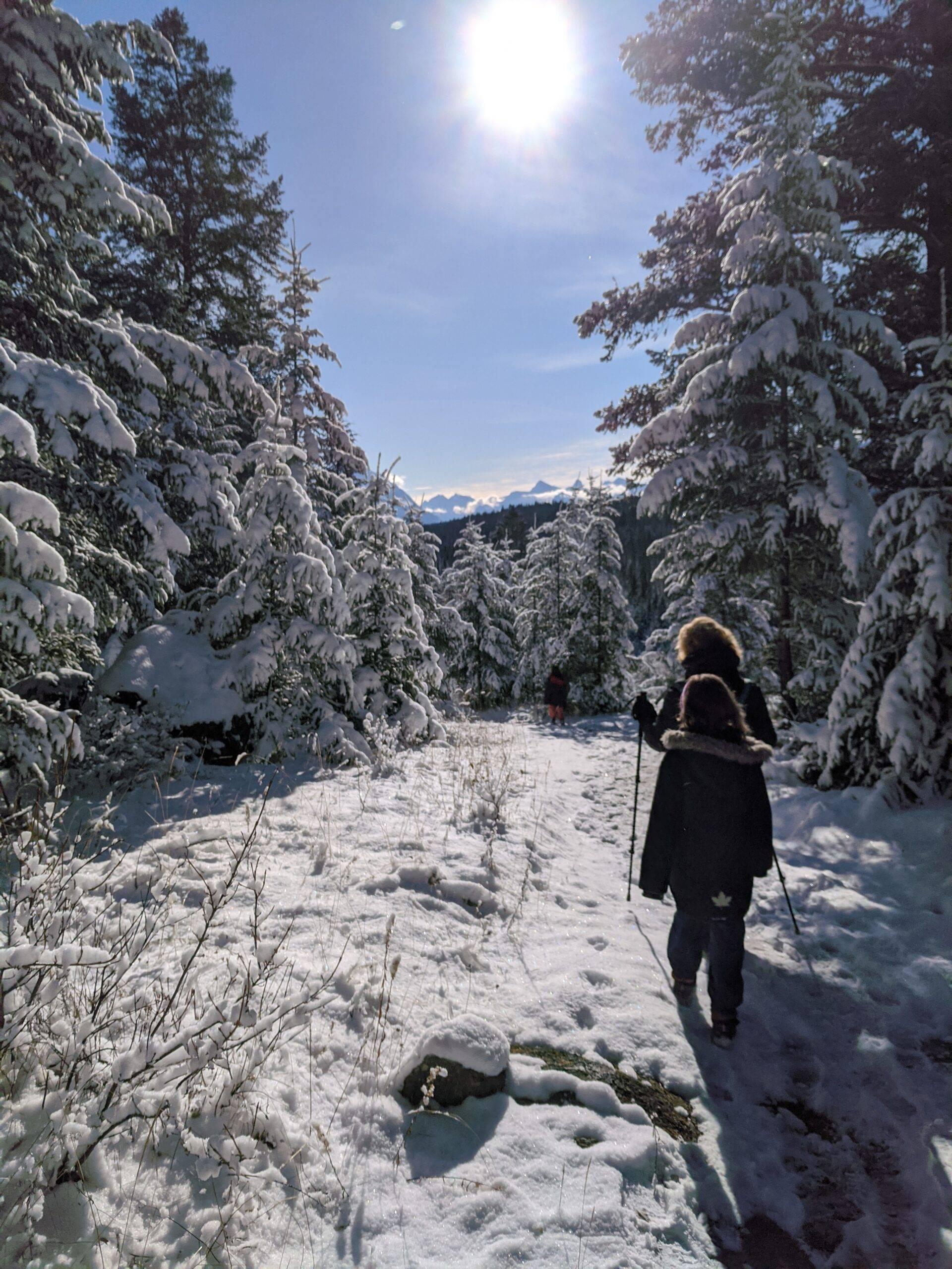 Jasper – La vallée des 5 lacs – Photos Album