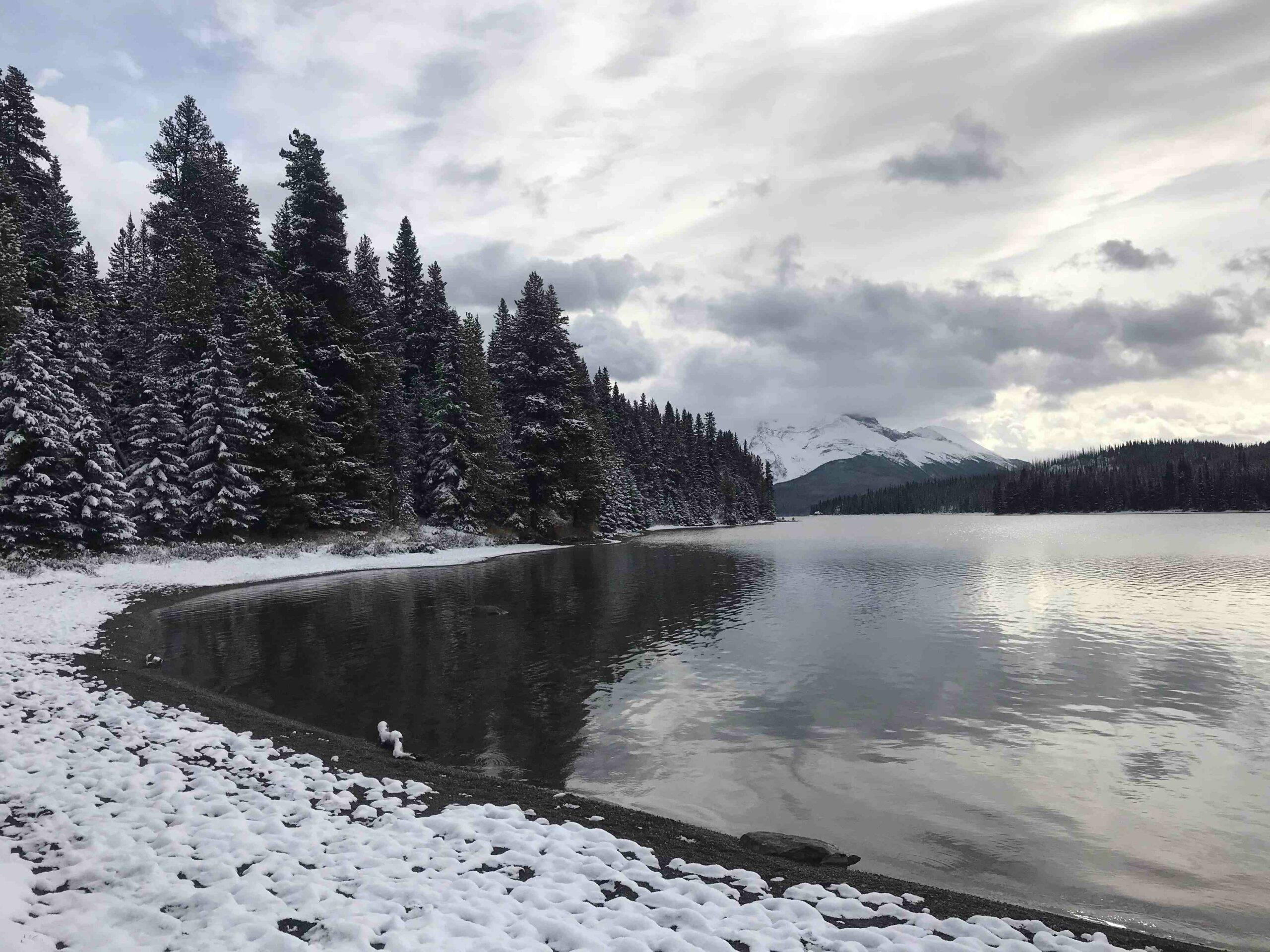 Jasper – Lac Maligne