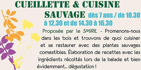 Cueillette & cuisine sauvage