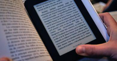 Guilhem, LA SAGA DE L'ANTEVERS 2: L'ANNIHILATRICE À COUETTES