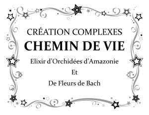 Les Elixirs (fleurs de Bach et élixirs d'orchidées) au secours de votre vie présente et de votre chemin de vie