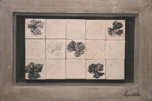 Briques empreintes végétales - Les adobes