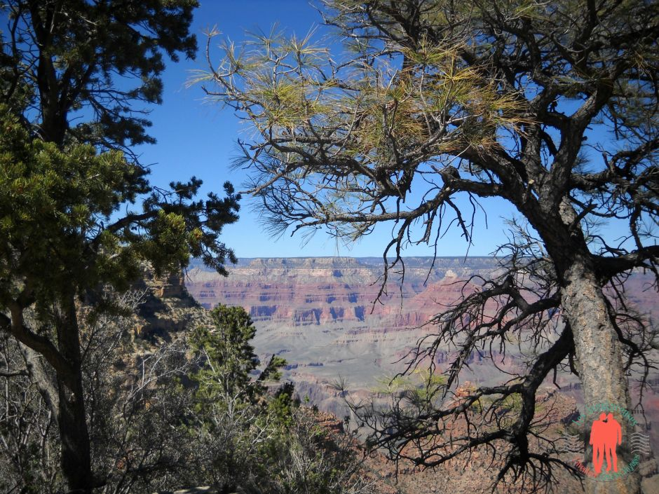 Vue panoramique Grand Canyon
