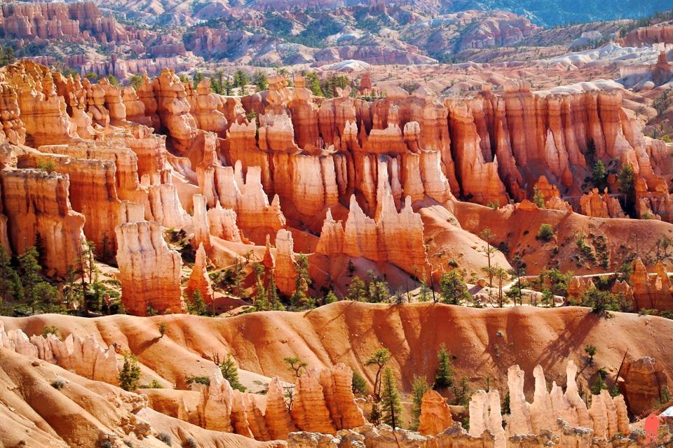 Bryce-Canyon-Utah-USA-Hoodoos