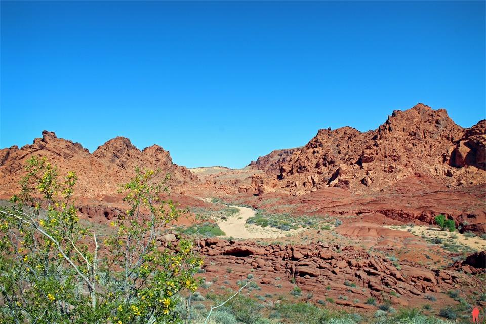 Panorama Vallée du Feu - Nevada