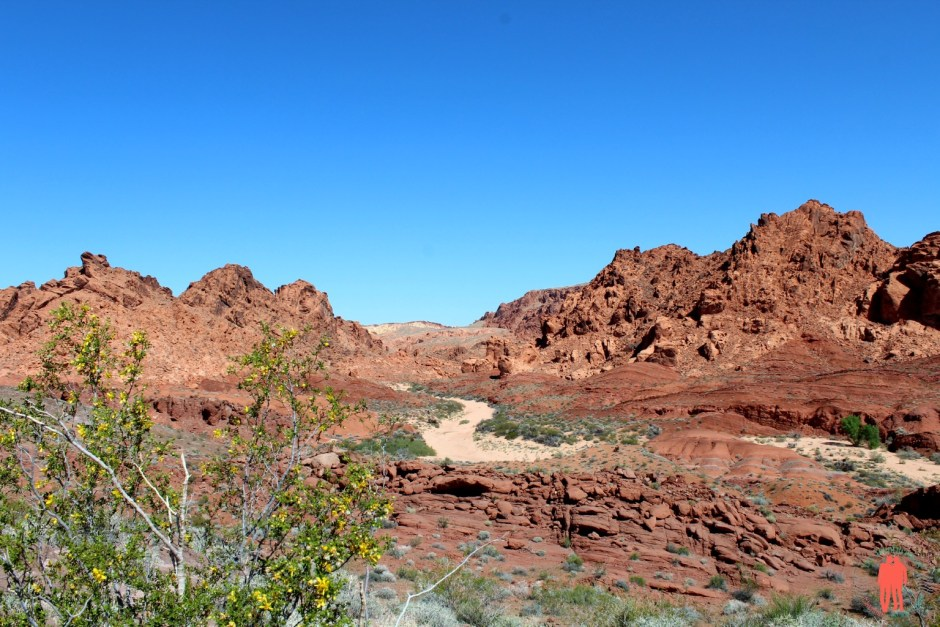 Panorama Valley of fire