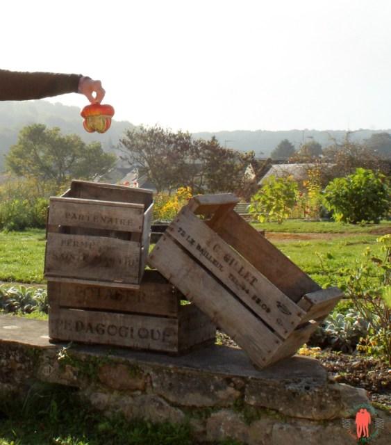 Caisses de légumes ancien à Fontevraud
