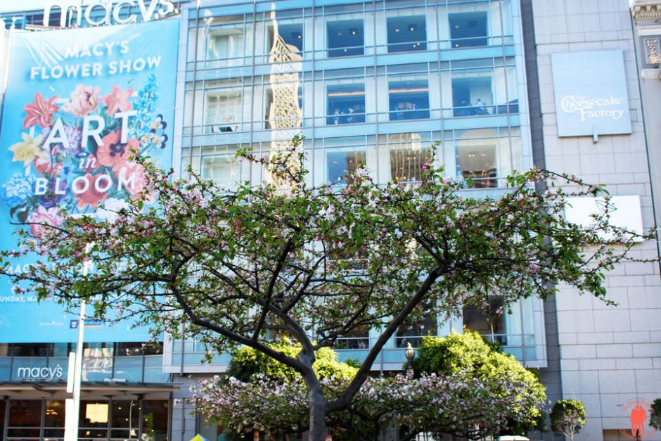 Macys Union Square - Visiter San Francisco