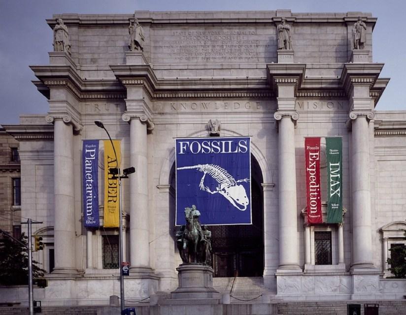 Musée d'histoire naturelle, musée de new-york