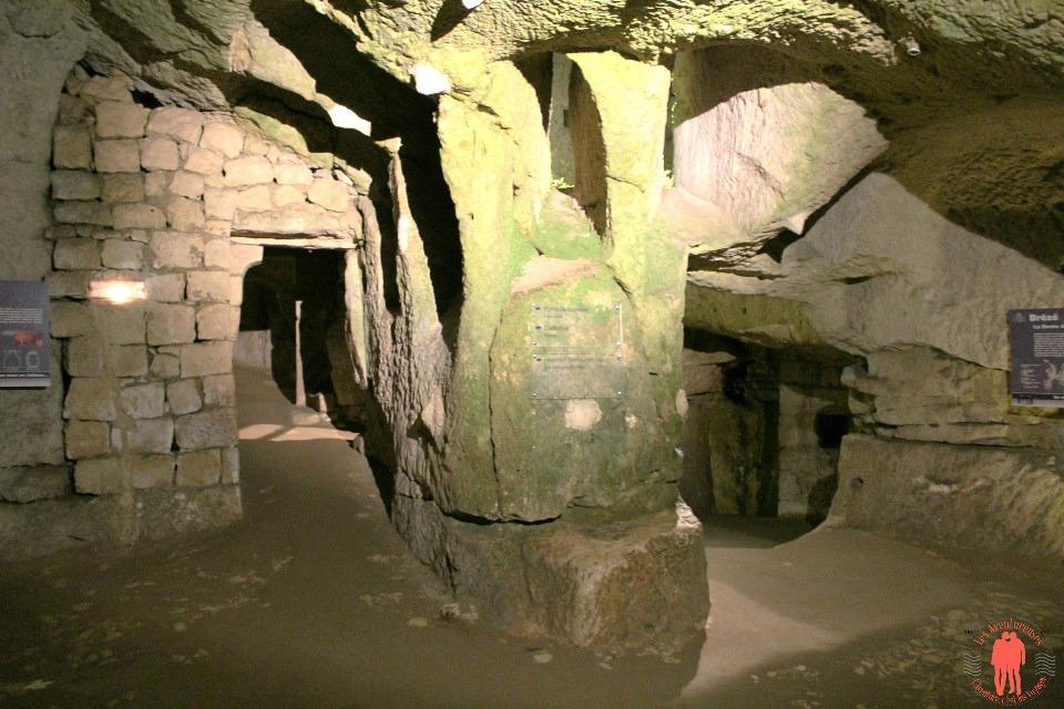 Troglodytes Château de Brezé