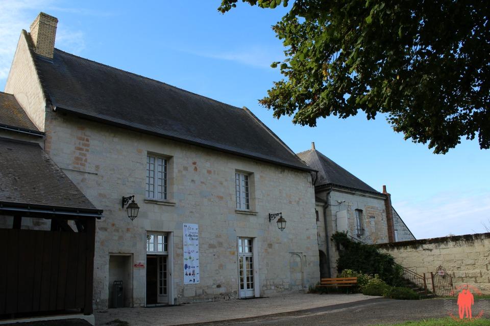 Visite Saumur Musée du Cheval