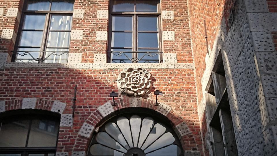 fleur Mons Belgique