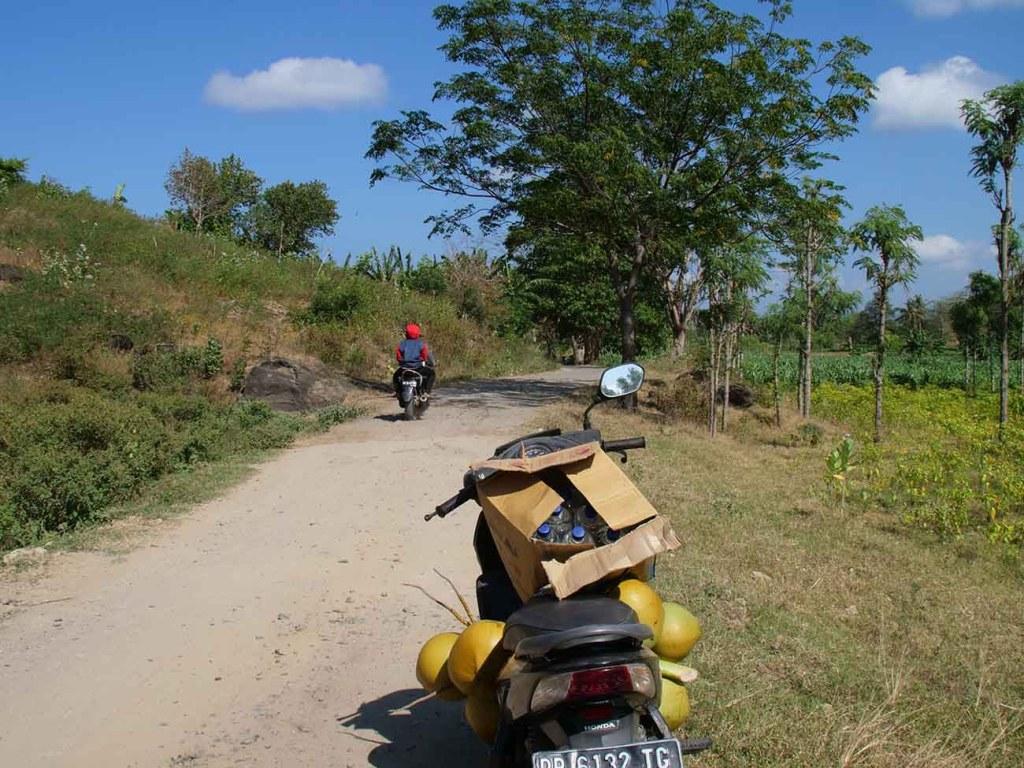 balade-lombok-scooter