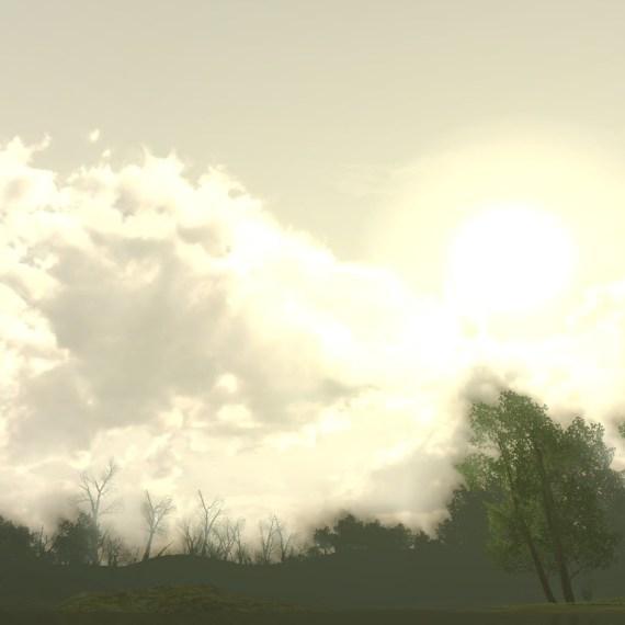 Le marais du Brandevin