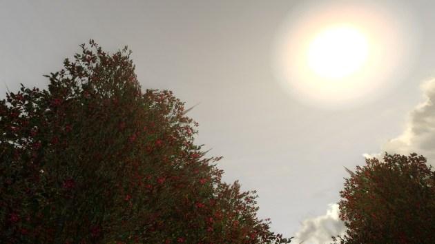 ScreenShot00184