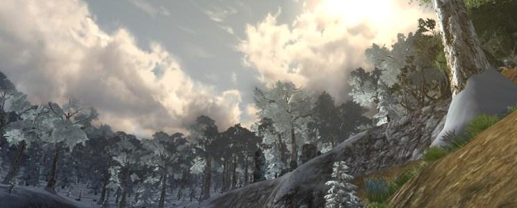 La route sous la forêt (2/3)