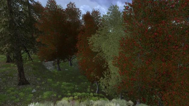 ScreenShot00552