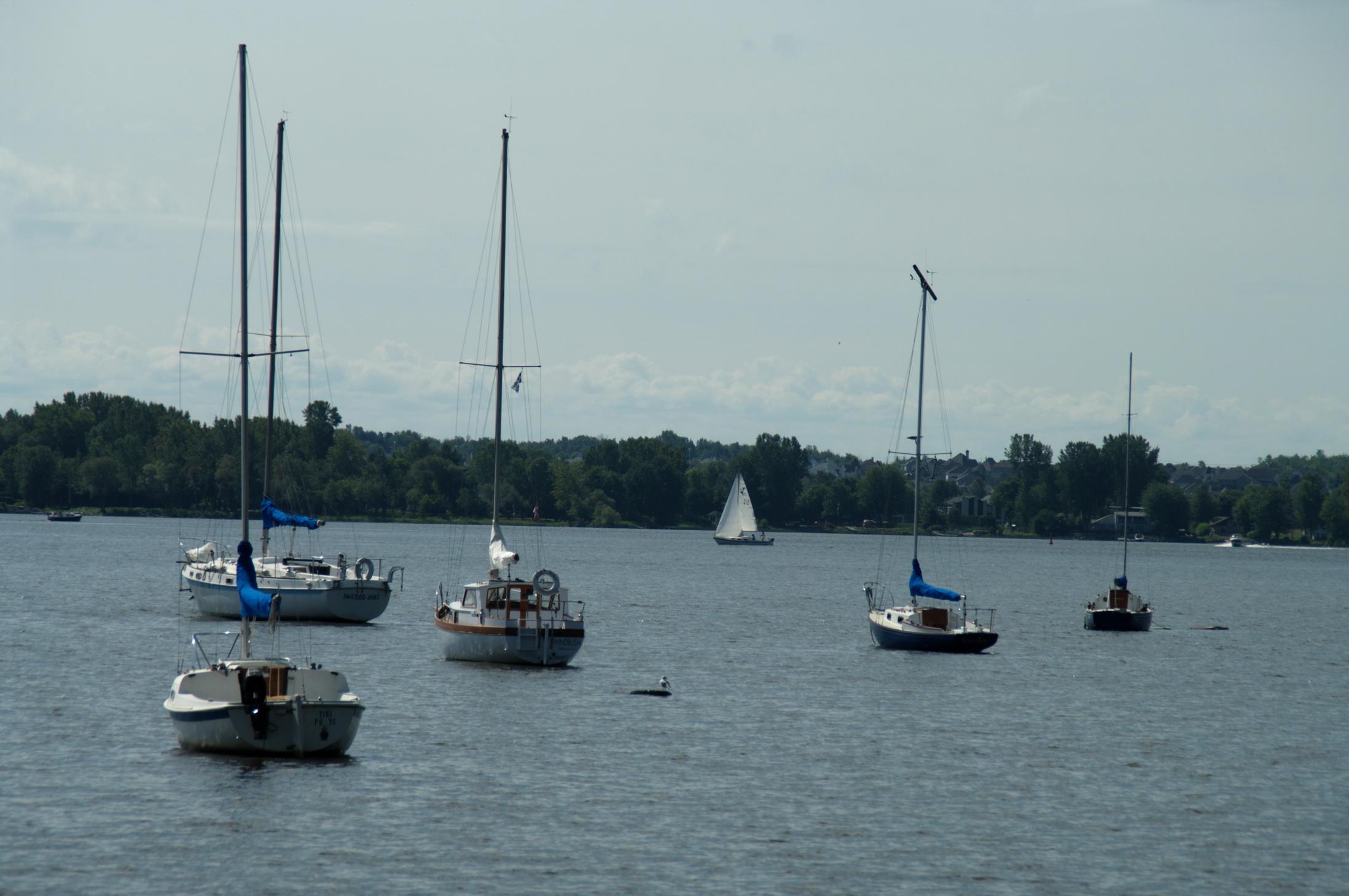 La ville possède des quais pour les bateaux de plaisance, des terrains de baseball et de soccer, ainsi que plusieurs parcs