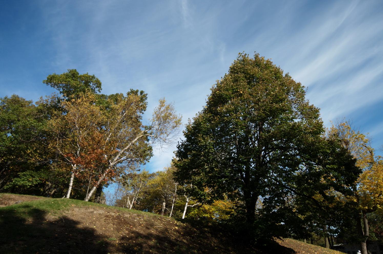 À flanc de montagne, une «architecture végétale» qui n'a de cesse de ne nous éblouir