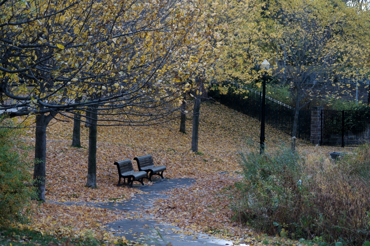 Chronique d_un jour d_automne_004