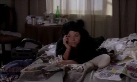 Callie y Arizona resumen de episodio 7×08