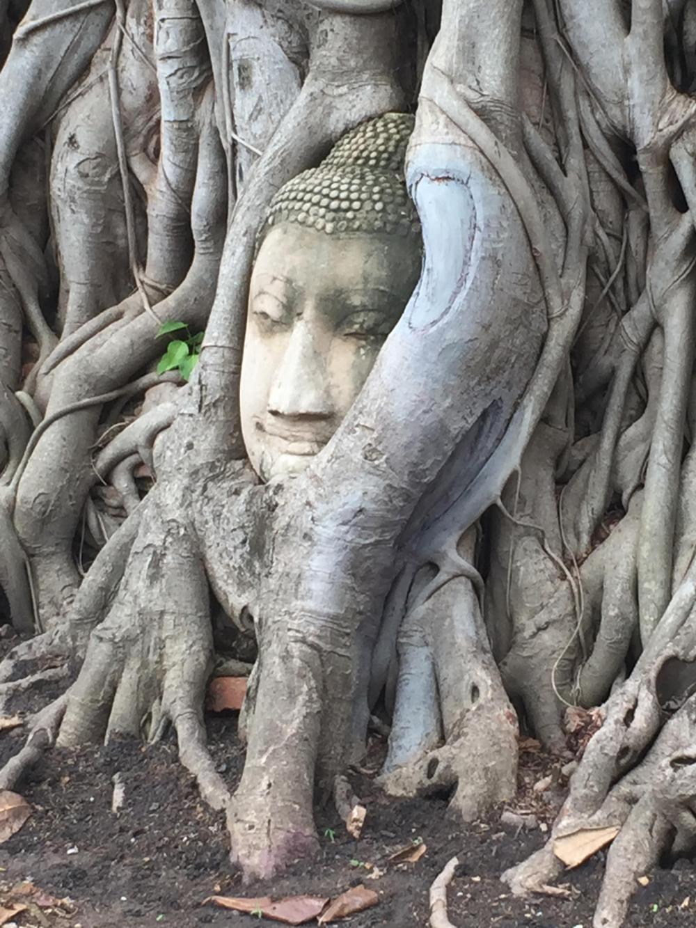 ayutthaya par les bons plans de stef