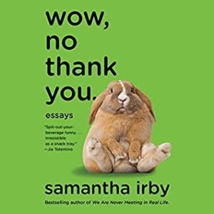 Wow, No Thank You audiobook by Samantha Irby