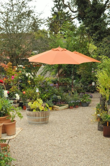 La jardinerie à Giverny