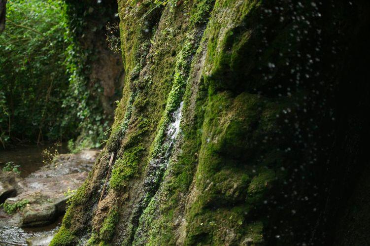 La grotte artificielle du jardin Vauban de Lille