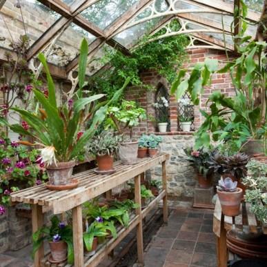 Kent-garden-greenhouse