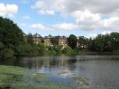 Hampstead Heath, sujet d'un de mes premiers articles
