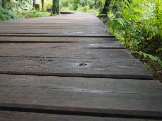 La passerelle en bois