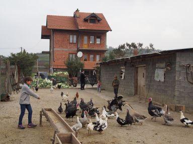 Les joies de la ferme chez les Hoti au Kosovo