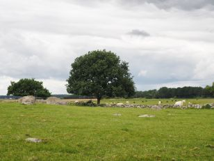 Des allures celtiques