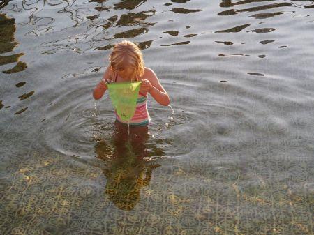 Une piscine avec des poissons! C'est le charme des bains portuaires d'Islands Brygge