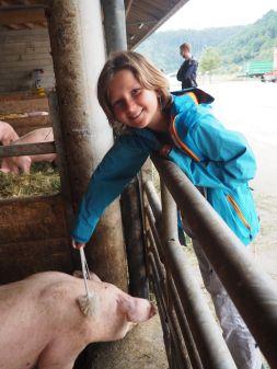 Puis visite de la ferme voisine avec atelier grattage de cochons...