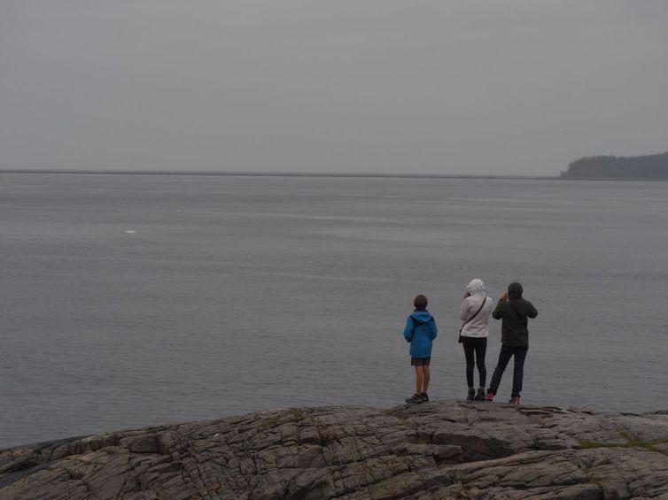 Mon poste d'observation. Voyez-vous le beluga ?